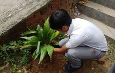 Tree Plantation Drive by Highlanders (5)
