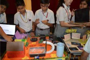 Science Exhibition 2019 (5)