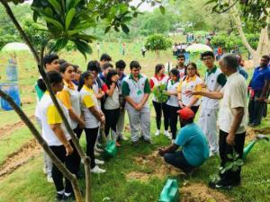 Going Native with Nature- A plantation drive (2)