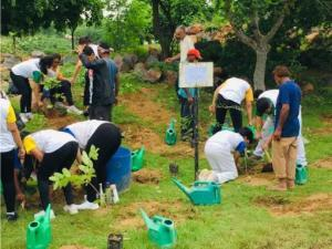 Going Native with Nature- A plantation drive (5)