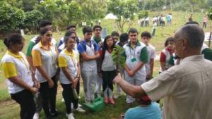 Going Native with Nature- A plantation drive (6)